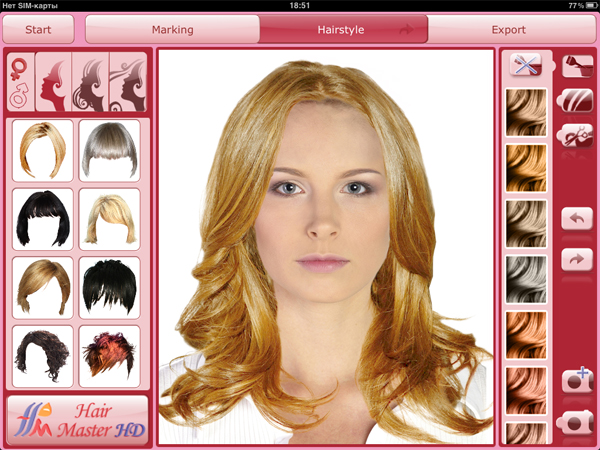 selection of hairstyles and hair color